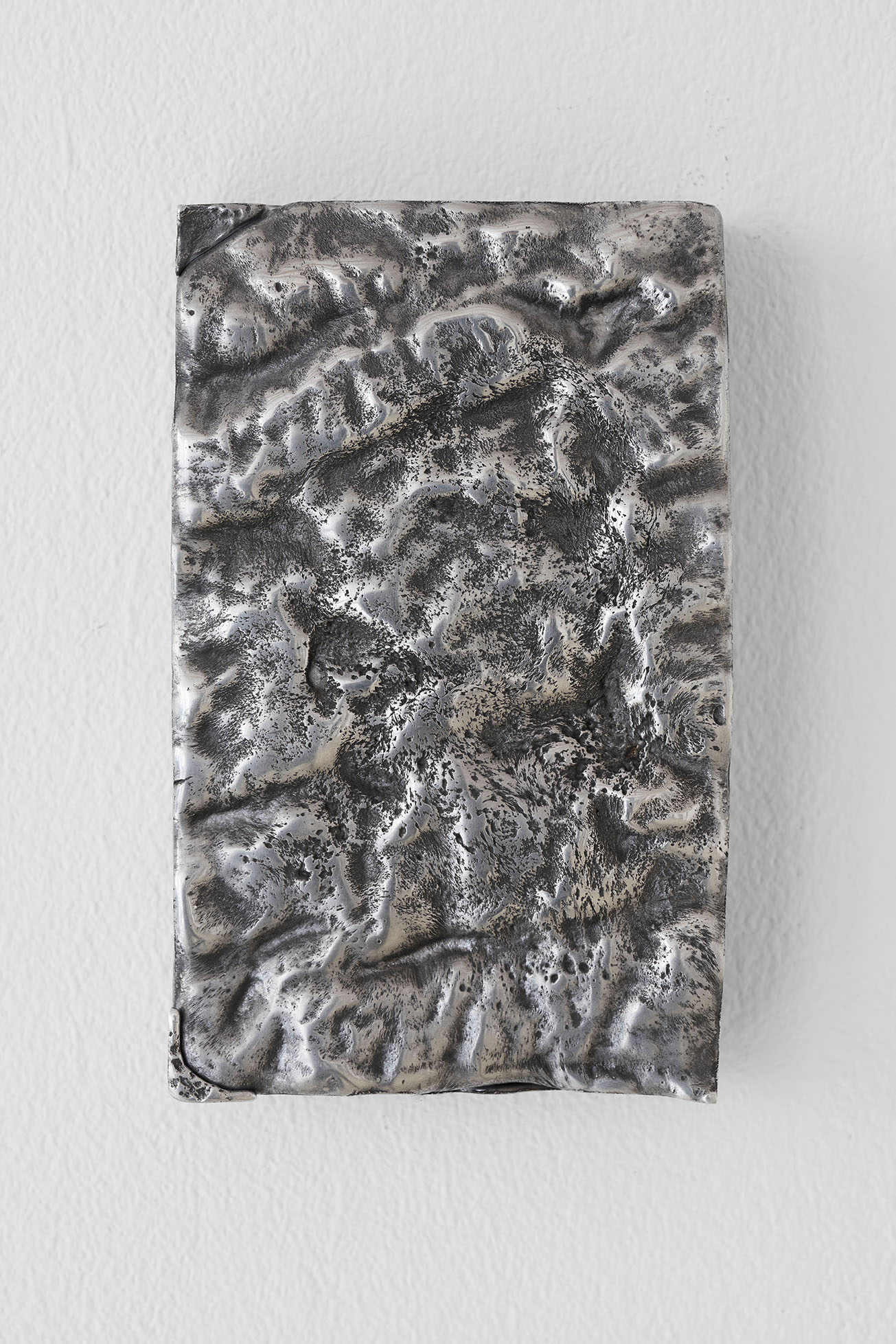 Irina Lotarevich, furs, tiny grains of rock, rough bark, 2020
